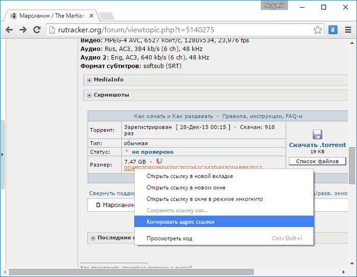Медиаплеер RoxPlayer с поддержкой воспроизведения видео с торрентов