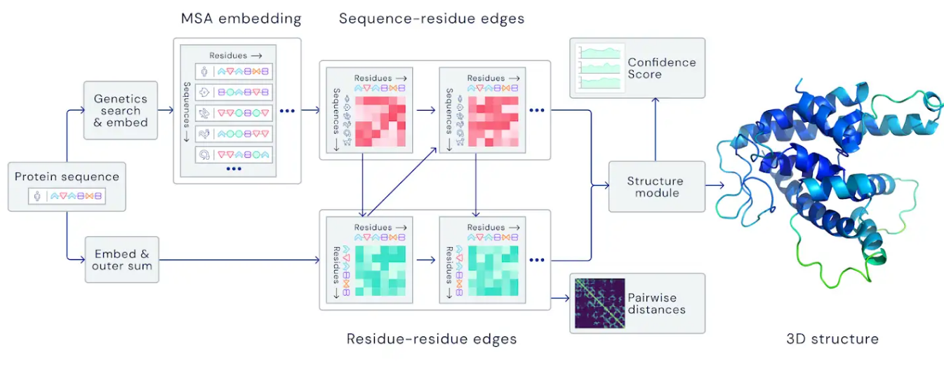 Алгоритм AlphaFold от DeepMind решил 50-летнюю задачу фолдинга белка