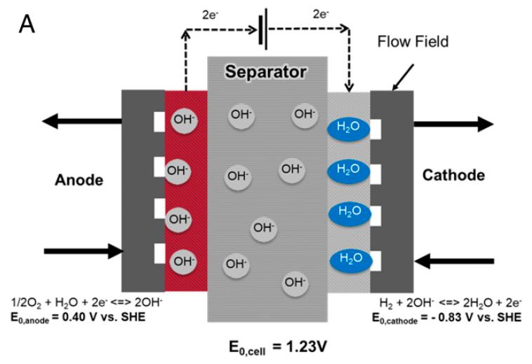 Схема установки. На аноде (красная часть) вырабатывается кислород, на катоде (синяя) — водород